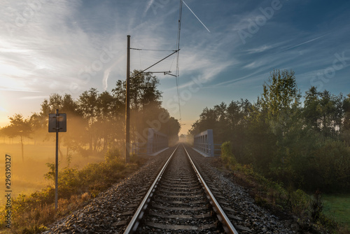 Fotomural  Railway track in color morning with fog and autumn color fresh air