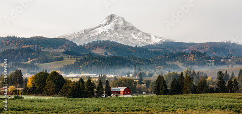 Fotografía  View of a red barn and orchard with Mt Hood in the background