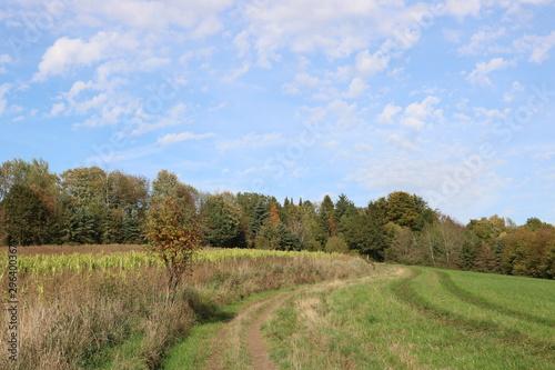 Valokuva Naturlandschaft im Oktober