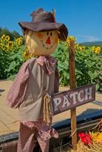 Scarecrow Decoration Closeup In A Sunflower Field