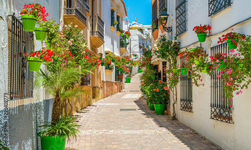 Fotomural  The beautiful Estepona, little and flowery town in the province of Malaga, Spain