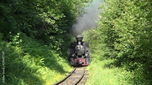 Fotografie, Obraz Old steam locomotive train on narrow railway crosses the woods