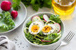 Healthy salad with egg, radish, kale and cucumber in bowl. Diet fresh spring salad