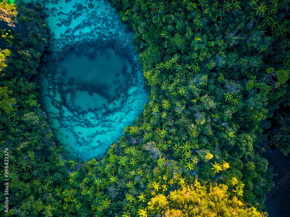 Fototapety, obrazy: Raja Ampat Hidden Lake