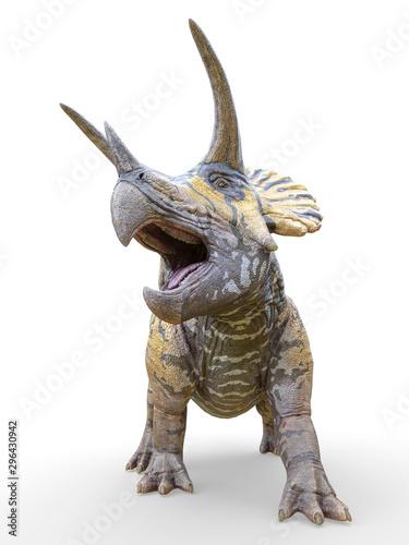 Fototapeta  triceratops standing up on white background