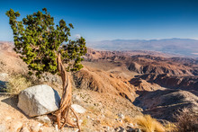 Scenic View Of The Coachella Valley Viewed From A Joshua Tree National Park Overlook.