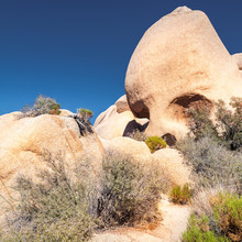 The Skull - Scenic Rock Formations In The Joshua Tree National Park, California