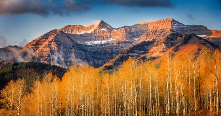 FototapetaAspen sunrise panorama with Mount Timpanogos, Utah, USA.
