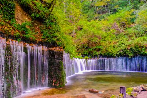 Obraz na plátně  秋の白糸の滝