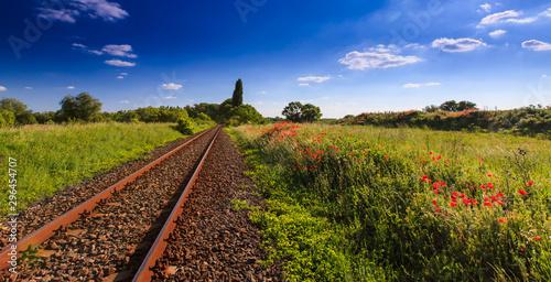 Keuken foto achterwand Spoorlijn Wild red poppy flowers in remote rural area, along an old scenic railroad