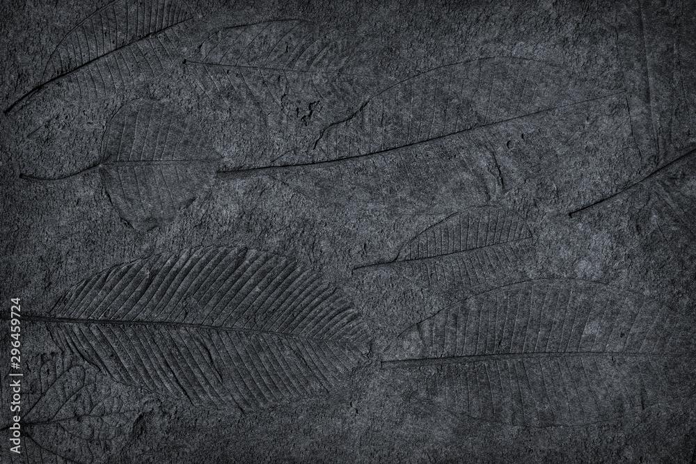 Fototapety, obrazy: leaf print or stamp of leaf  on black stone