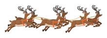 Cute Jumping Deer With Antlers...