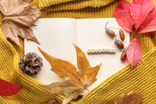 Beautiful Autumn Composition With Notebook And Leaves On Warm Sweater