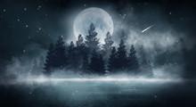 Dark Forest. Gloomy Dark Scene...