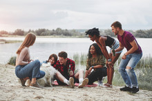 Dog Is In Center Of Attention. Group Of People Have Picnic On The Beach. Friends Have Fun At Weekend Time