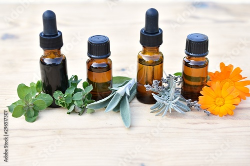 Photo Essential oil, hydrosol, extract in brown bottles with fresh herbs and flowers, herbal medicine, phytotherapy, natural remedies, home apothecary  concept