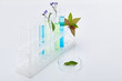 Leinwandbild Motiv glass test tubes with liquid near plants on white table