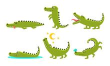 Crocodile Cartoon Character In...
