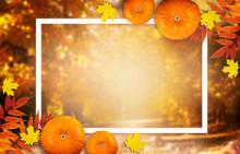 Thanksgiving Day Autumn Festiv...
