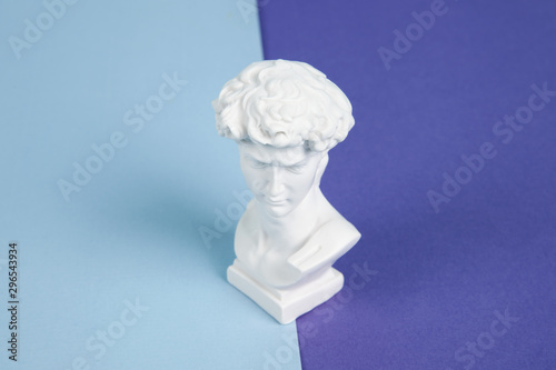 Photo resin bust bicolor