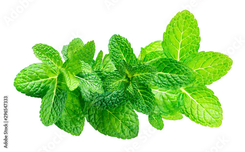 Obraz Peppermint Isolated. Fresh mint leaves ia a row on white background, top view. Close up - fototapety do salonu