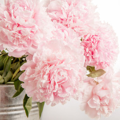 Panel Szklany Peonie Delicate beautiful pink bouquet of peonies closeup, wedding card, invitation, romantic image.