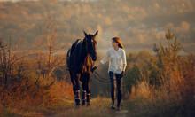 Young Girl Riding A Horse.