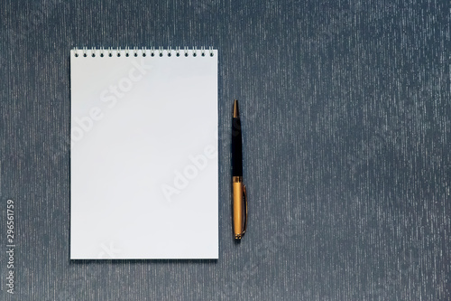 Photo sur Toile Spirale Flatlay with mockup. Office supplies, notebook with blank page for writing text, pen, on gray background with copy space