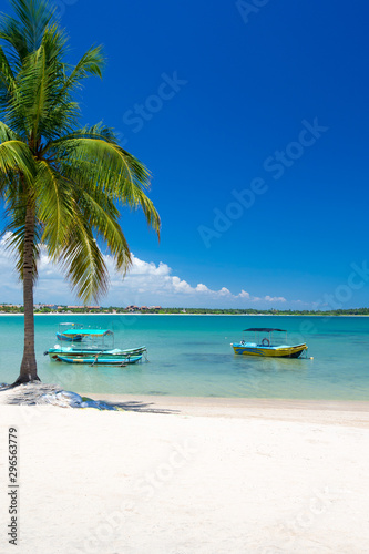 Spoed Fotobehang Eiland Beach with palm trees and sky. Summer vacation travel holiday background concept.