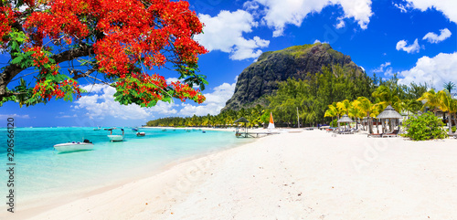 Montage in der Fensternische Insel Beautiful beaches of sunny Mauritius island. Tropical vacations