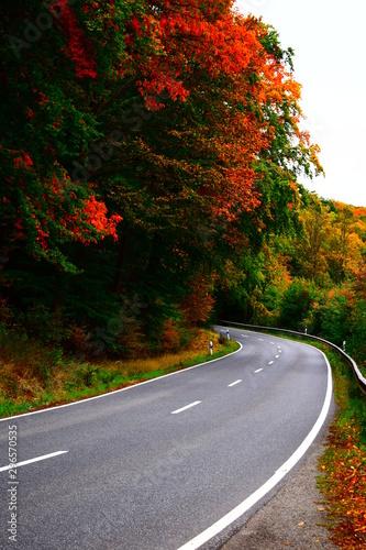 herbstliche Straße in der Eifel Fototapet