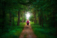 Blonde Woman Walking On A Straight Path To A Forest Clearing In A Mystical Forest