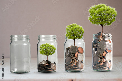 Fototapeta Money coins and tree growing in jar. Profit on deposit in bank and dividend for stock investment concept. obraz