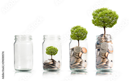 Money coins and tree growing in jar Fototapeta