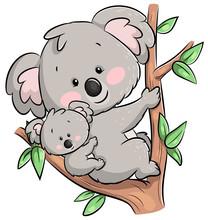 Niedlicher Kletternder Koala Mit Baby - Vektor-Illustration