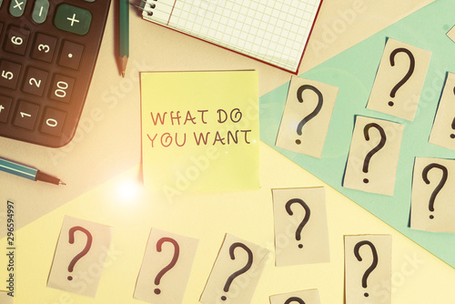 Conceptual hand writing showing What Do You Want Wallpaper Mural