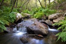 Pequeña Cascada En El Río De La Miel, Parque Natural Del Estrecho, Algeciras, Cadiz, Andalucia, España