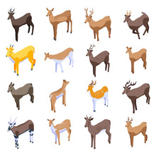 Deer Icons Set. Isometric Set Of Deer Vector Icons For Web Design Isolated On White Background