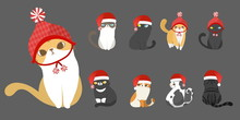 Merry Christmas With Set Of Santa Claus Costume Cats In Different Breeds And Different Poses On Grey Background. Vector Illustration Character Design.