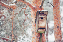 Birdhouse From Wood In The Winter Snow Covered Forest On Natural Background On Pine Tree