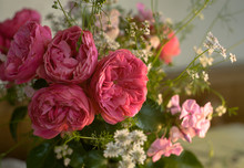 Pink Roses Bouquet With White ...
