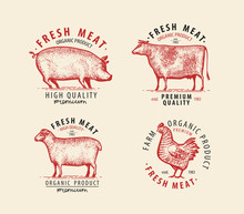 Meat Set Of Labels. Butcher Shop Symbol. Vintage Vector Illustration