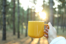 Woman Hold Yellow Cup In Forest, Space For Text