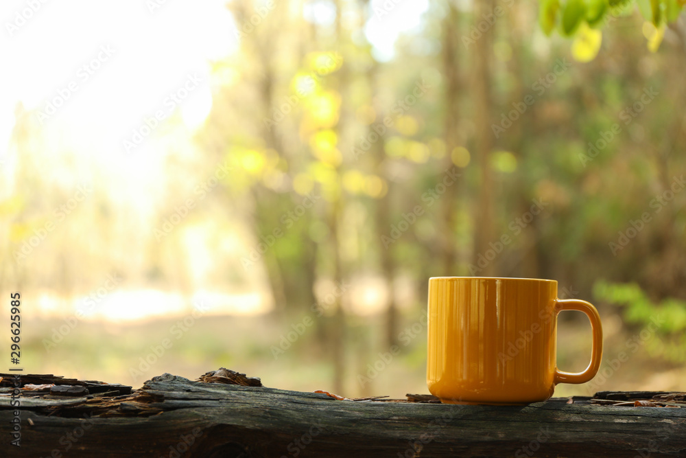 Fototapety, obrazy: Yellow cup on trunk. Beautiful forest, space for text