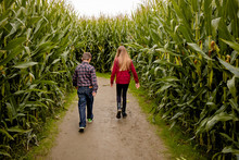 Kids Walking Through Corn Maze