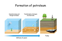 Formation Of Petroleum. Oil And Gas Formation.