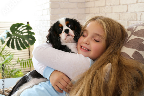 Stampa su Tela Portrait of little girl with long blonde straight hair playing with black and white Cavalier King Charles Spaniel puppy at home