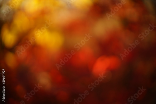 abstract blurry background in yellow red colors, blurred autumn leaves in sunny Canvas Print