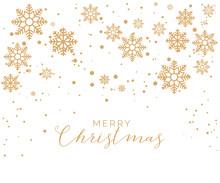 Merry Christmas Holiday Design...