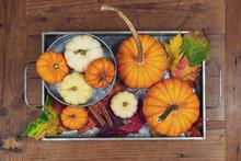 Tray Of Pumpkins On Rustic Bar...
